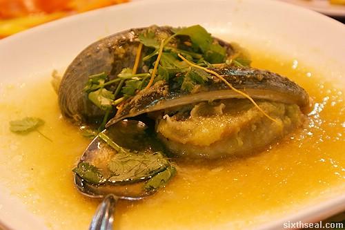 twinsky sabah abalone