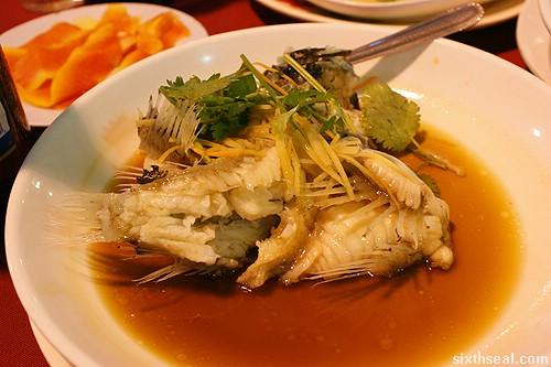 twinsky seafood stone fish
