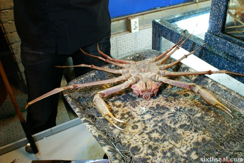 Alaskan King Crab pick
