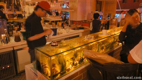aquarium bar