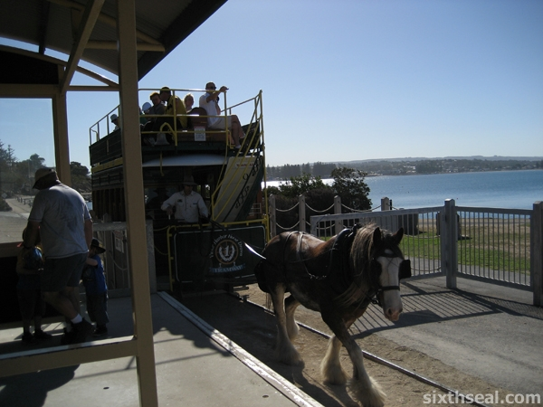 Victor Harbor Horsedrawn Tram