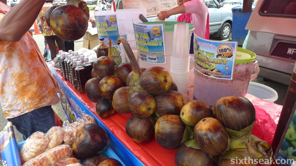 sea coconut
