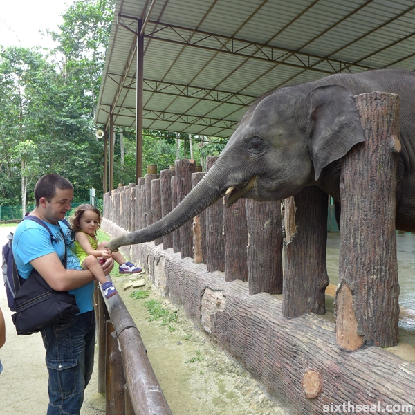 elephant conservation malaysia