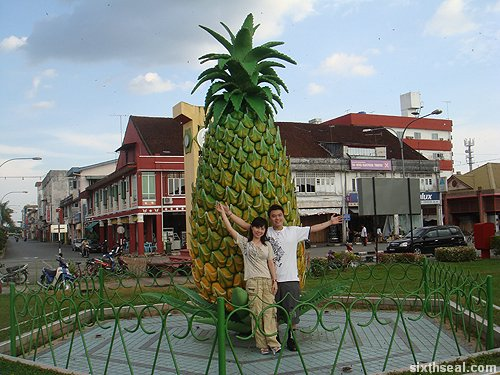 pineapple us