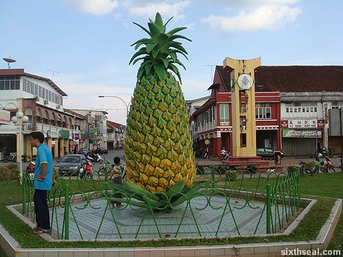 sarikei pineapple