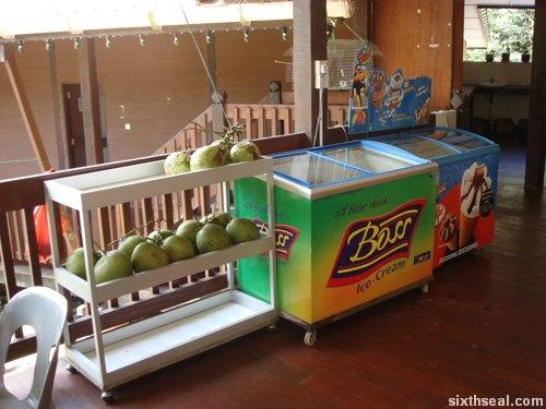 canteen coconuts