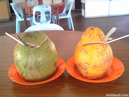 coconuts